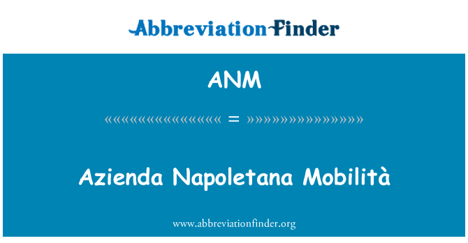 ANM: Azienda Napoletana Mobilità