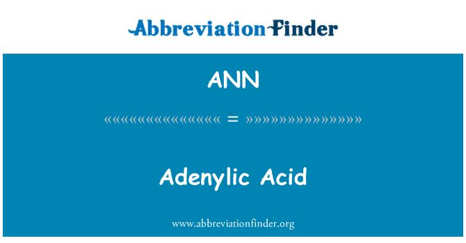 ANN: Asid Adenylic