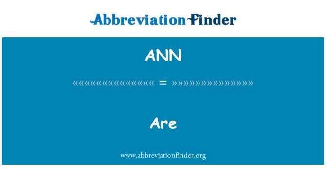 ANN: 都是