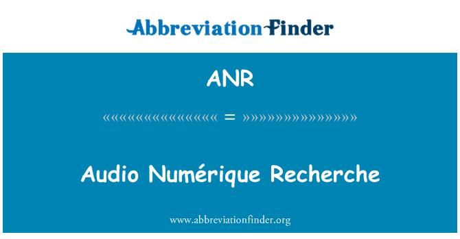ANR: Audio Numérique Recherche