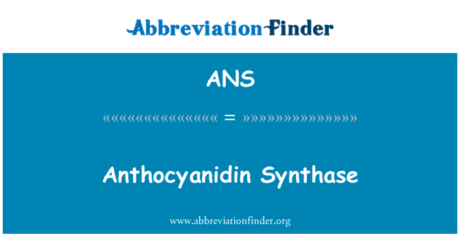 ANS: Anthocyanidin Synthase
