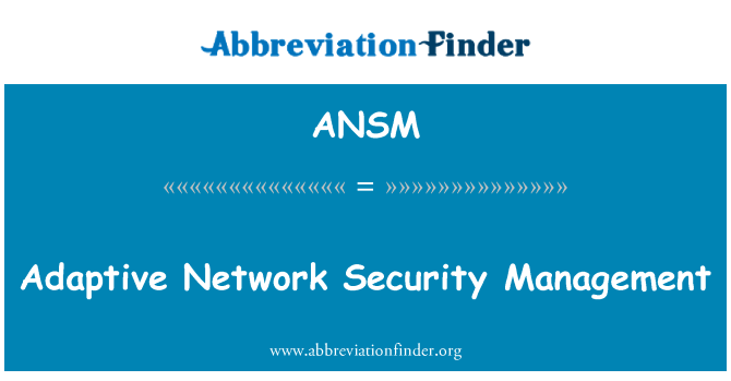 ANSM: Adaptive Network Security Management