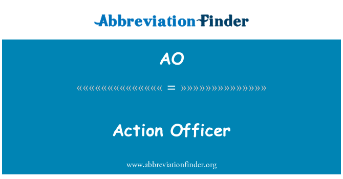 AO: Action Officer