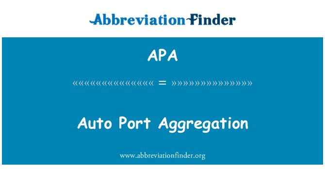 APA: Auto Port Aggregation