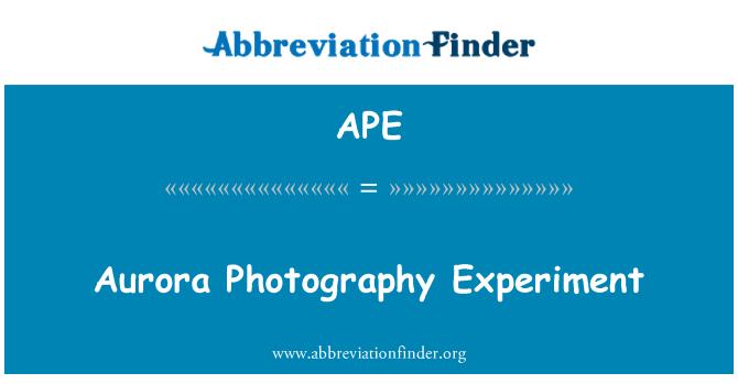 APE: Aurora Photography Experiment