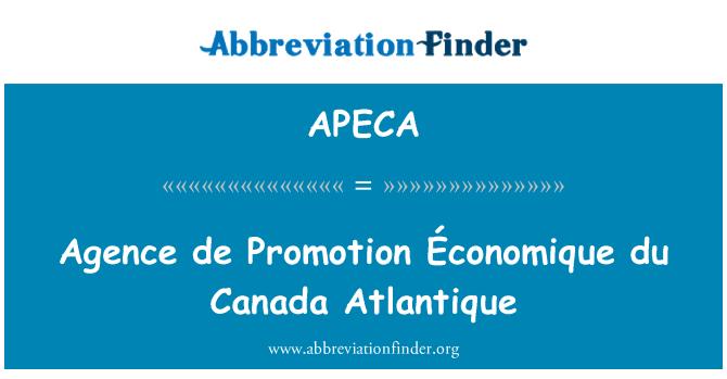 APECA: 法新社德促进西非经济和杜加拿大大西洋