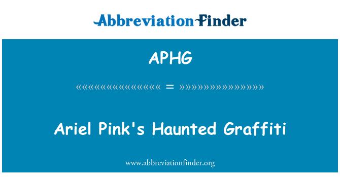 APHG: Haunted Graffiti de Ariel Pink