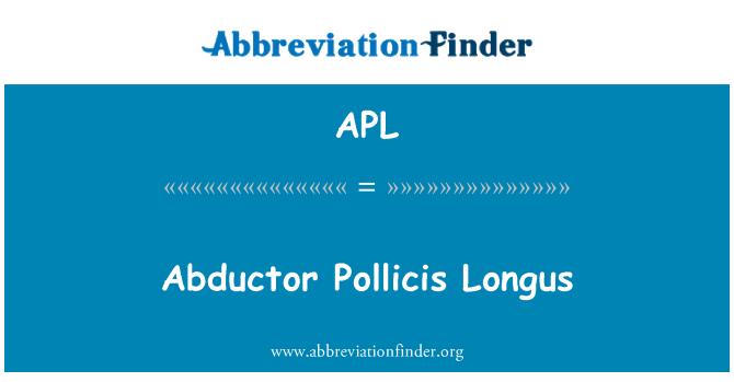 APL: Abductor Pollicis Longus