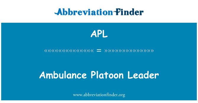 APL: Ambulance Platoon Leader