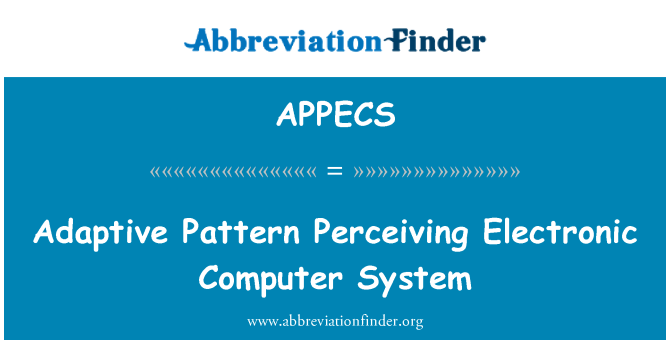 APPECS: Adaptive Pattern Perceiving Electronic Computer System