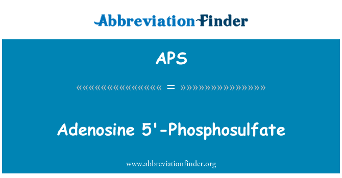 APS: Adenosine 5'-Phosphosulfate