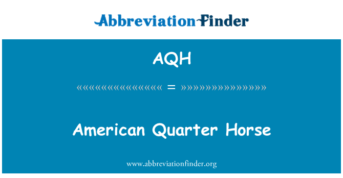 AQH: American Quarter Horse