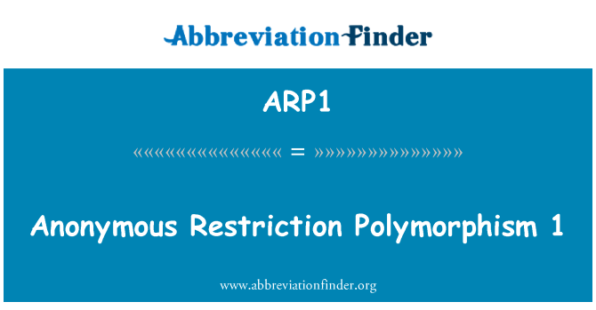 ARP1: Anonymous Restriction Polymorphism 1