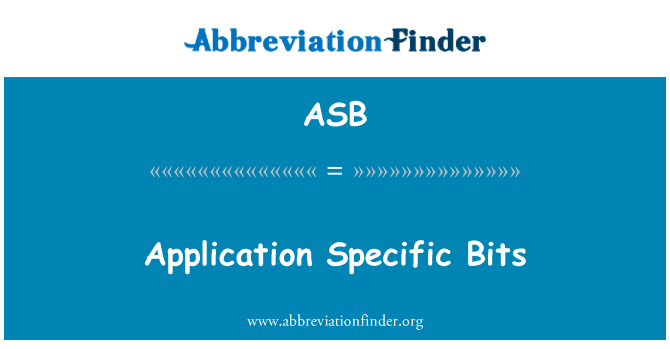 ASB: Application Specific Bits