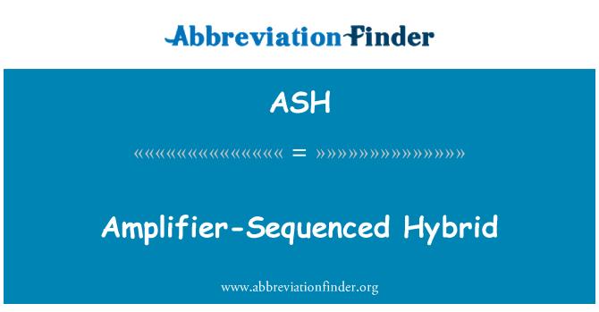 ASH: Amplifier-Sequenced Hybrid