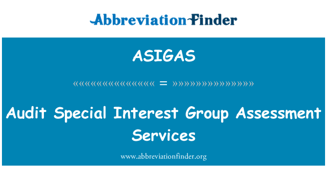 ASIGAS: Audit Special Interest Group Assessment Services