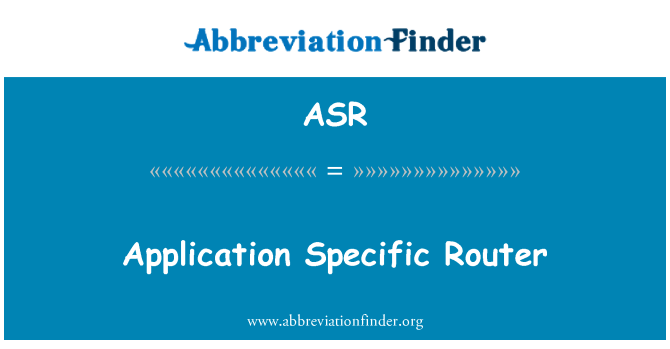 ASR: Application Specific Router