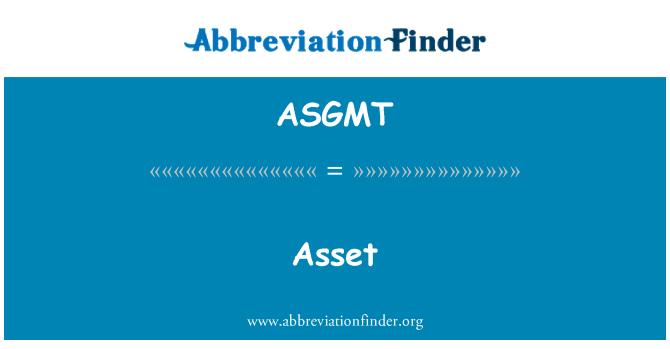 ASGMT: 资产
