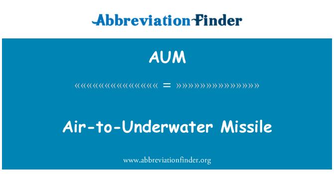 AUM: Air-to-Underwater Missile