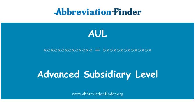 AUL: Peringkat Syarikat subsidiari yang maju
