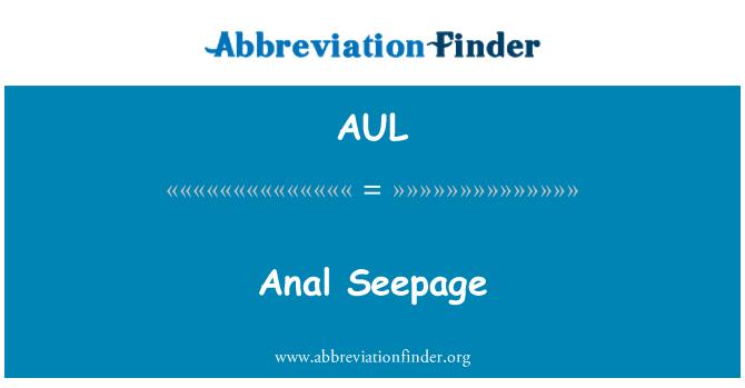 AUL: 肛门渗流