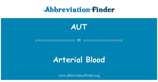 AUT: 动脉的血
