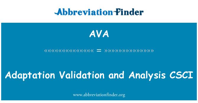 AVA: Adaptation Validation and Analysis CSCI