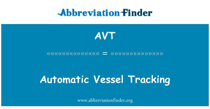 AVT: Automatic Vessel Tracking