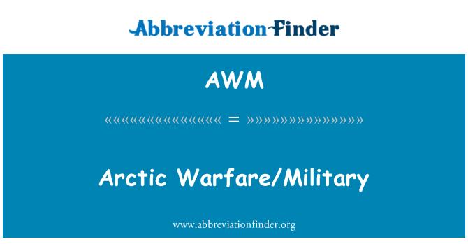 AWM: Arctic Warfare/Military
