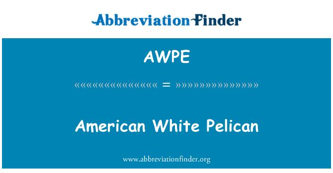 AWPE: 美国白鹈鹕