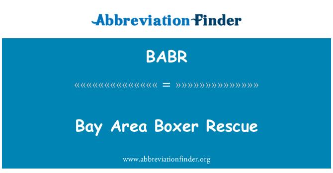 BABR: Bay Area Boxer Rescue