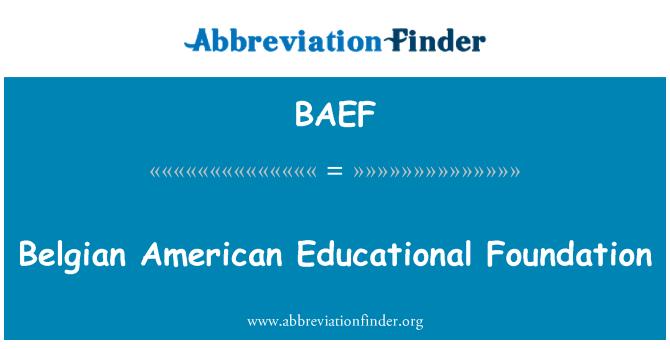 BAEF: Belgian American Educational Foundation