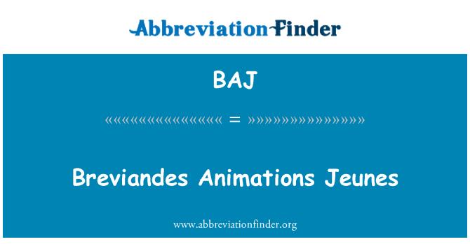 BAJ: Breviandes Animations Jeunes