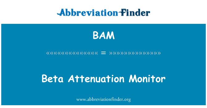 BAM: Beta Attenuation Monitor