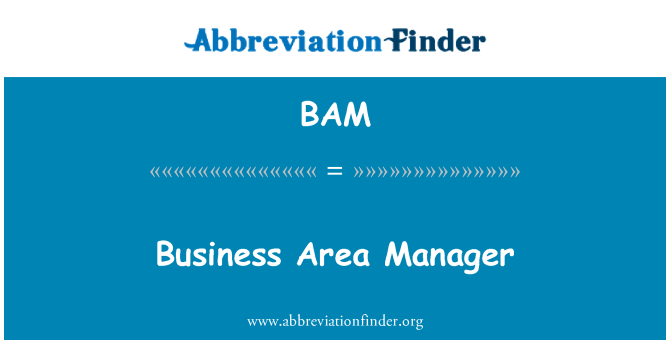 BAM: Business Area Manager