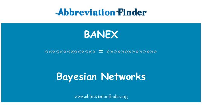 BANEX: Bayesian Networks