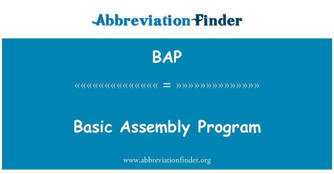 BAP: Basic Assembly Program