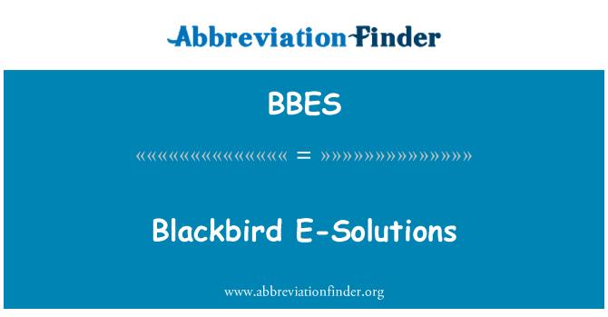 BBES: Blackbird E-Solutions