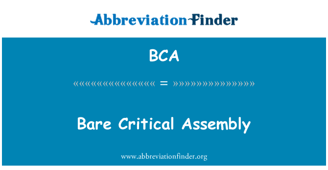 BCA: Bare Critical Assembly