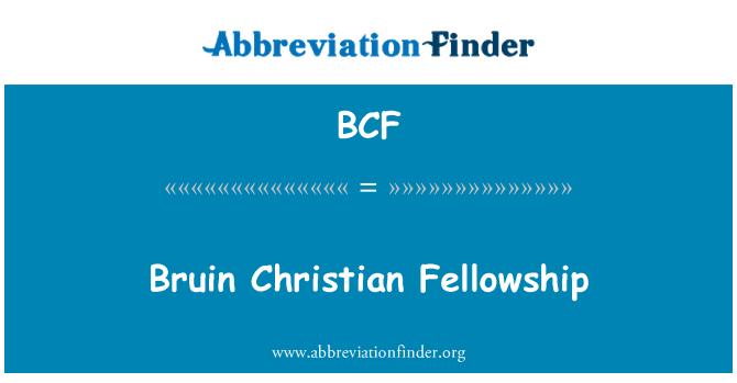 BCF: Bruin Christian Fellowship