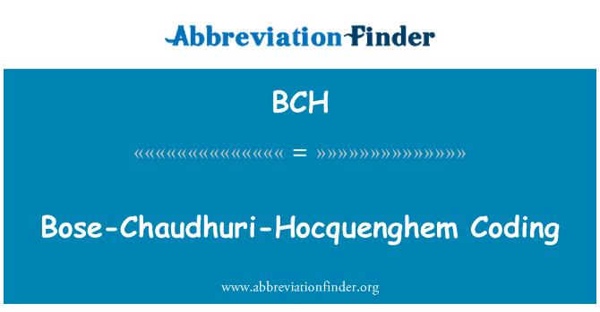 BCH: Bose-Chaudhuri-Hocquenghem Coding