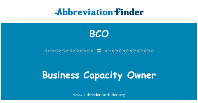 BCO: Business Capacity Owner