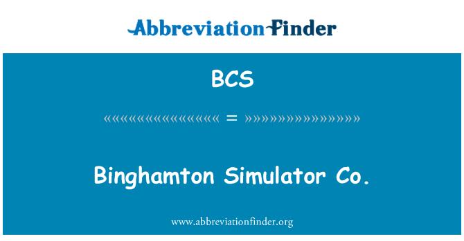 BCS: Binghamton Simulator Co.