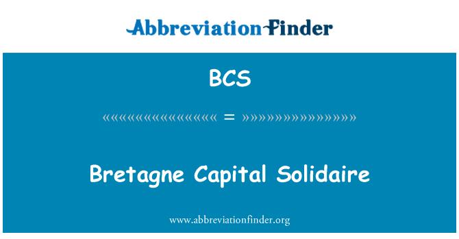 BCS: Bretagne Capital Solidaire
