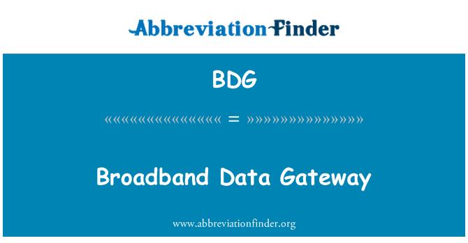 BDG: Broadband Data Gateway