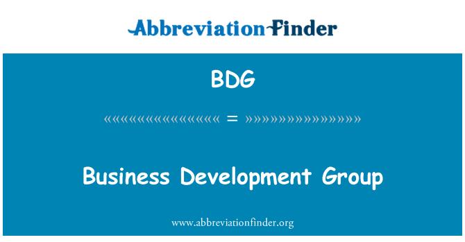 BDG: Business Development Group