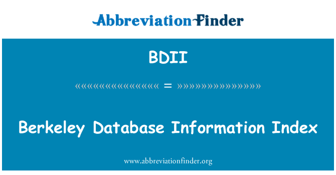 BDII: Berkeley Database Information Index