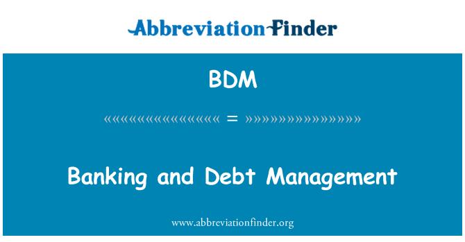 BDM: Banking and Debt Management