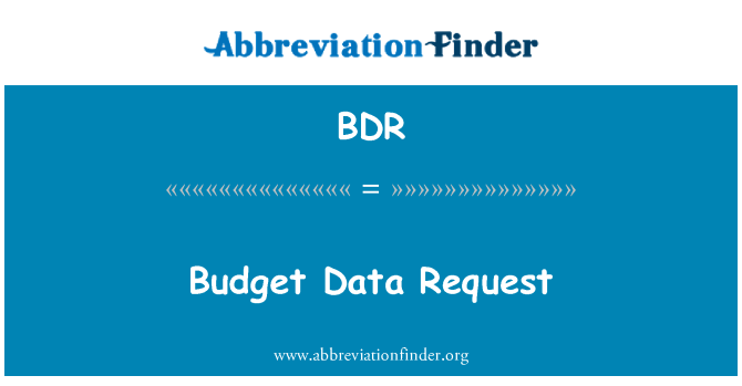BDR: Budget Data Request
