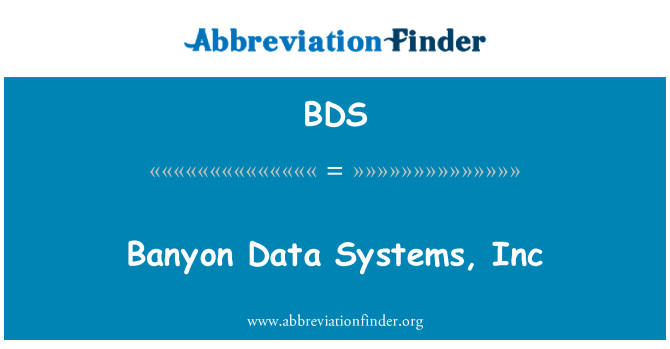 BDS: Banyon Data Systems, Inc